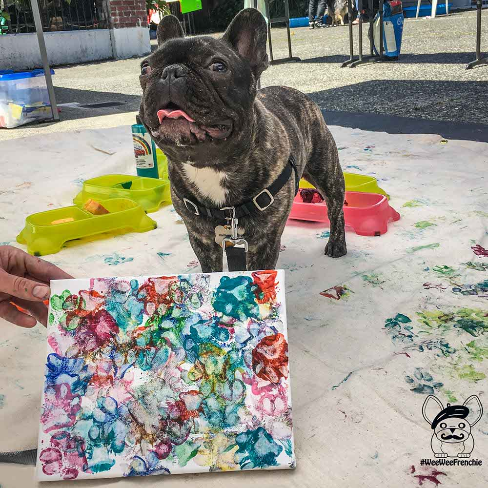How to Paw Paint with Your Dog