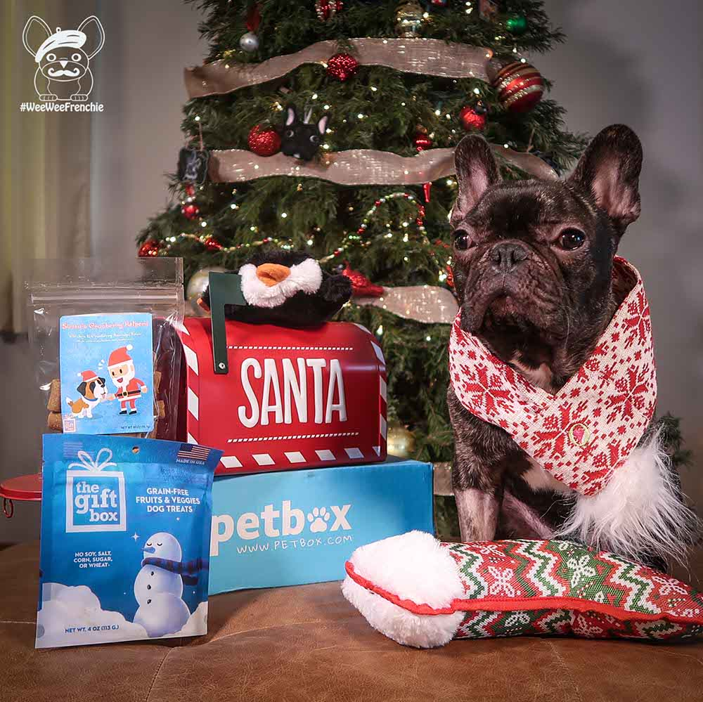Review of Petbox