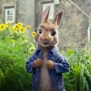 Meet Peter Rabbit