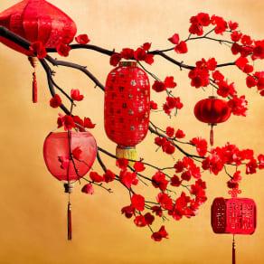Lunar New Year Fashion Showcase