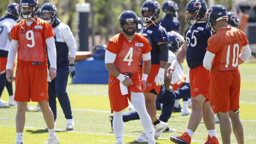 low priced e0d03 a7d6c Watch: Bears' Chase Daniel with first blooper of the season ...